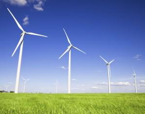 Duurzaamheid & Milieu